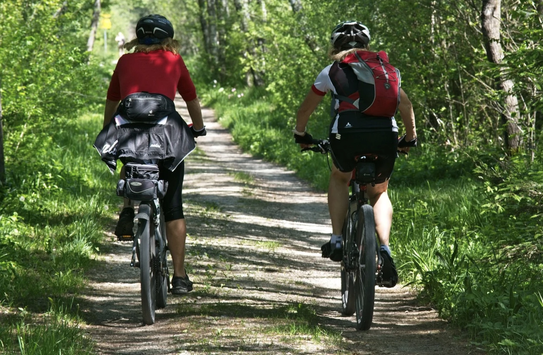 Faire du vélo en forêt : bon ou mauvais ?