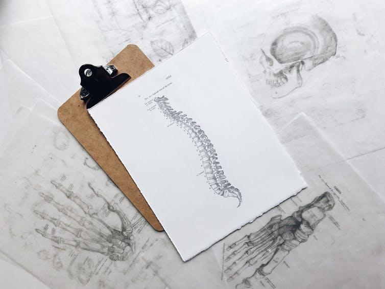 Comment prévenir et mieux soigner le mal de dos ?