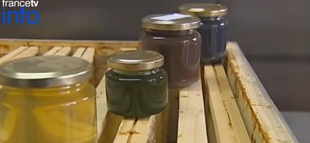 Miel coloré de Ribeauvillé, capture d'écran d'une vidéo FranceTVinfo.fr