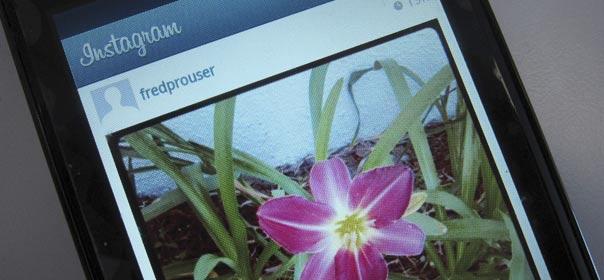 L'application Instagram va mettre à jour ses conditions d'utilisation au 16 janvier 2013. © REUTERS