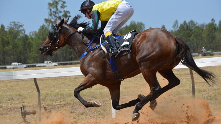 course, cheval, dopage