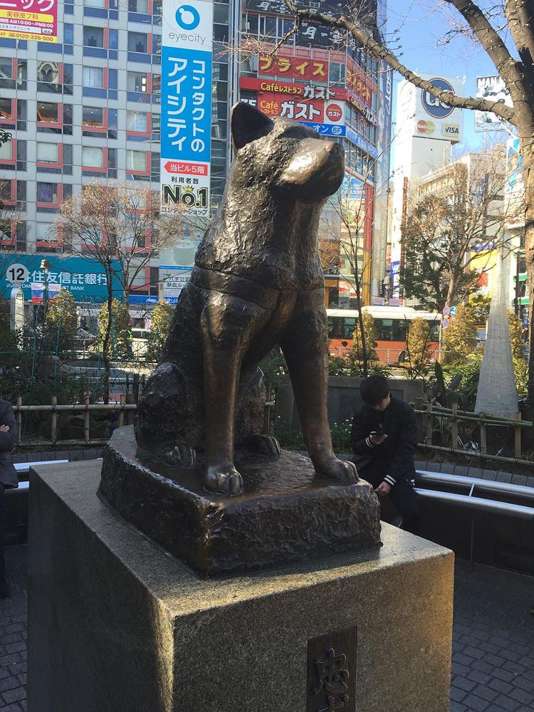 Hachiko, statue, chiens