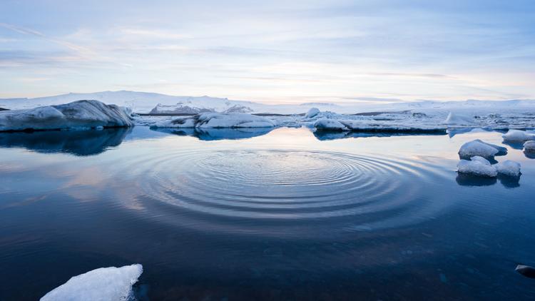 Icebergs, eau