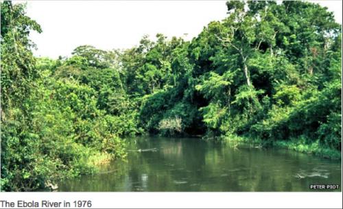 Ebola, rivière