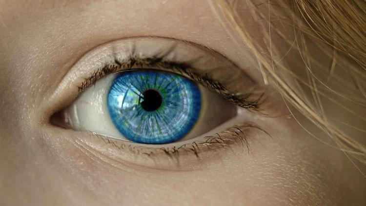 mouvements oculaires, oeil