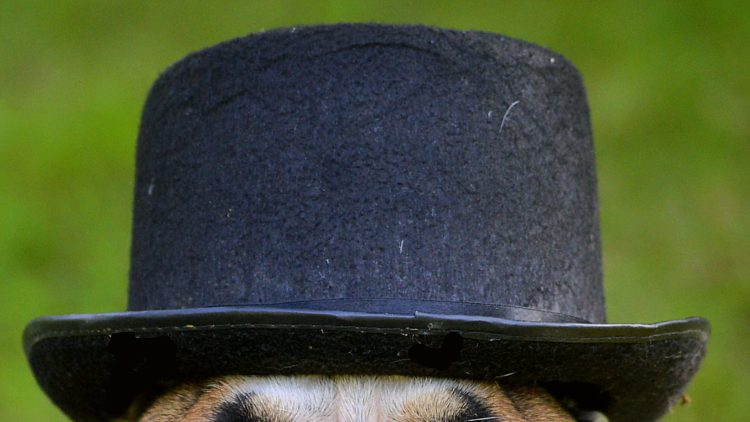 Pourquoi Dit On Faire Porter Le Chapeau Ca M Interesse