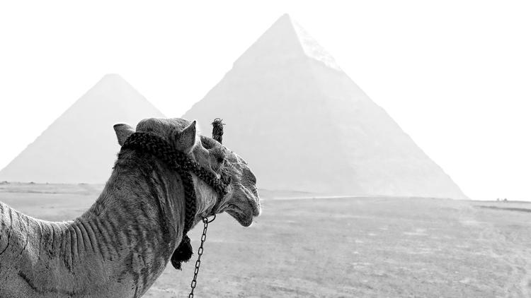 La vraie couleur des pyramides va vous surprendre!